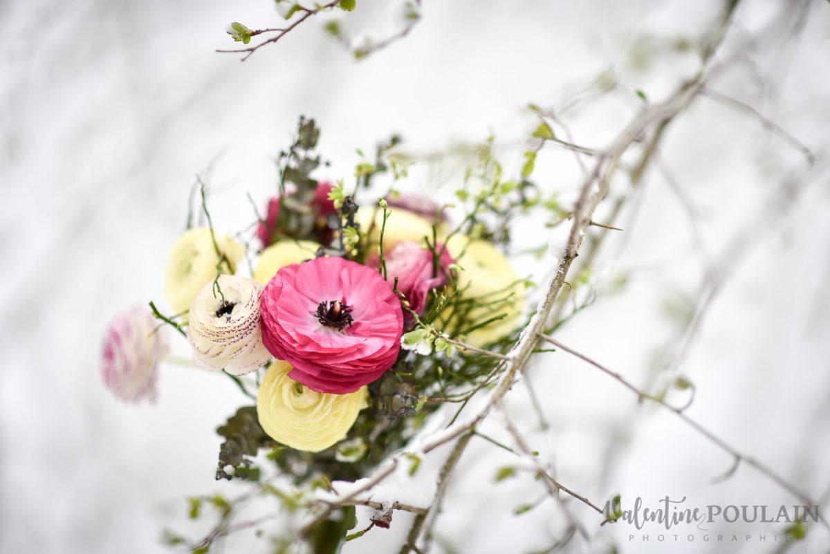 Fleurs neige - Valentine Poulain.JPG