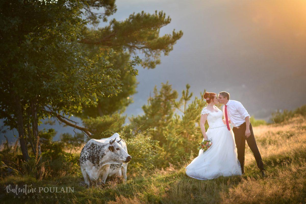 Day after montagne coucher soleil - Valentine Poulain vache