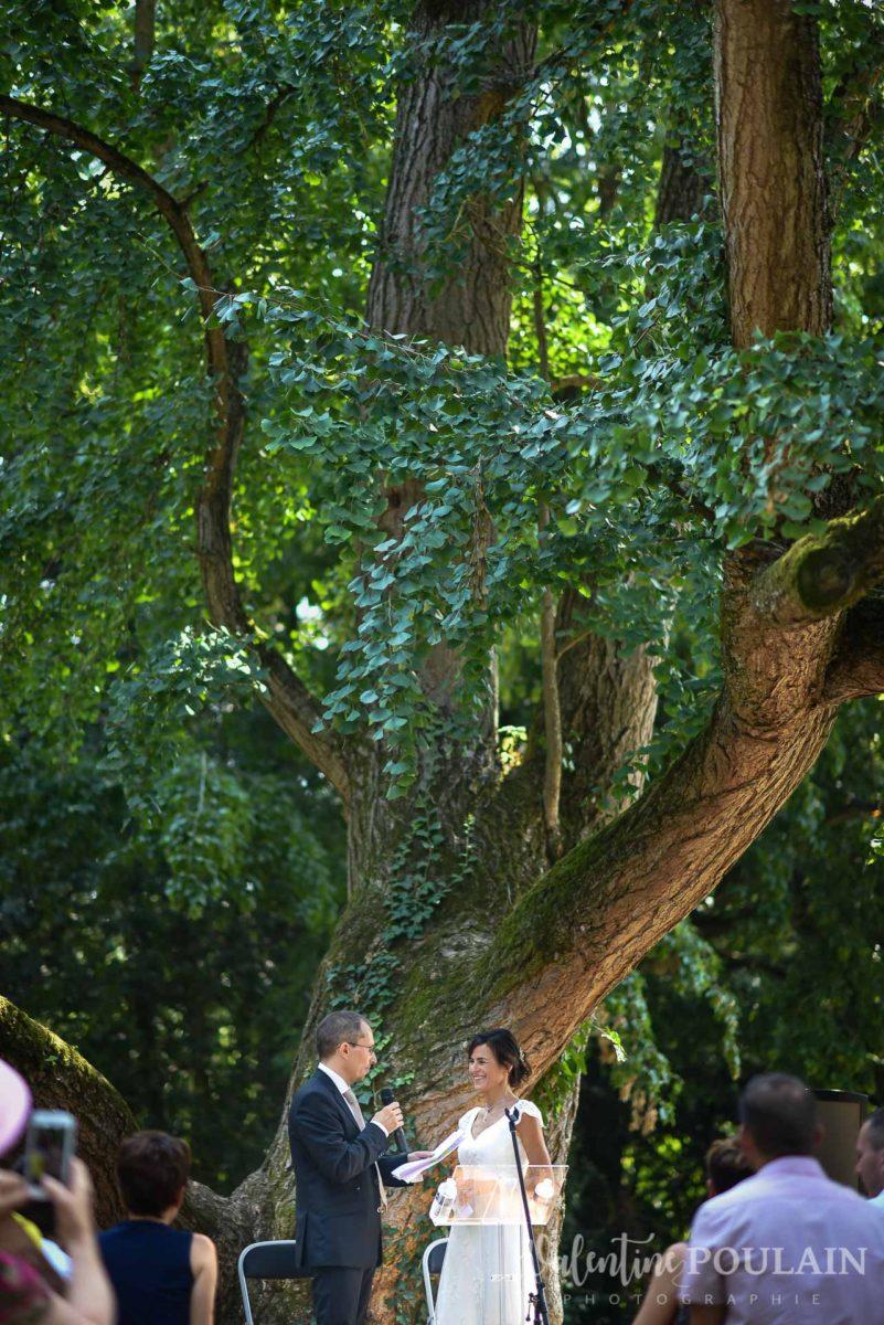 Mariage musée papier peint - Valentine Poulain colombe cérémonie arbre