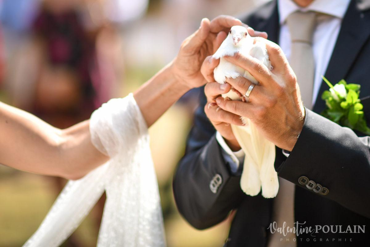 Mariage musée papier peint - Valentine Poulain colombe mains