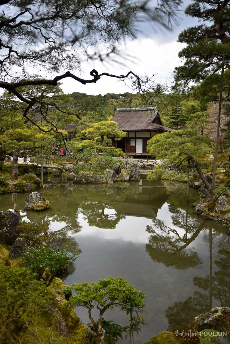 JAPON Tokyo Kyoto - Valentine Poulain nature