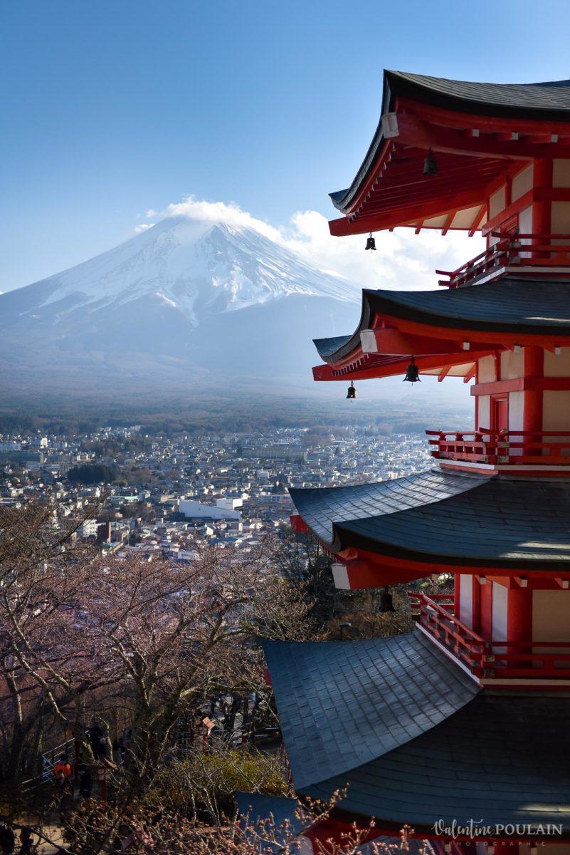 JAPON Tokyo Kyoto - Valentine Poulain pagoda Mont-Fuji