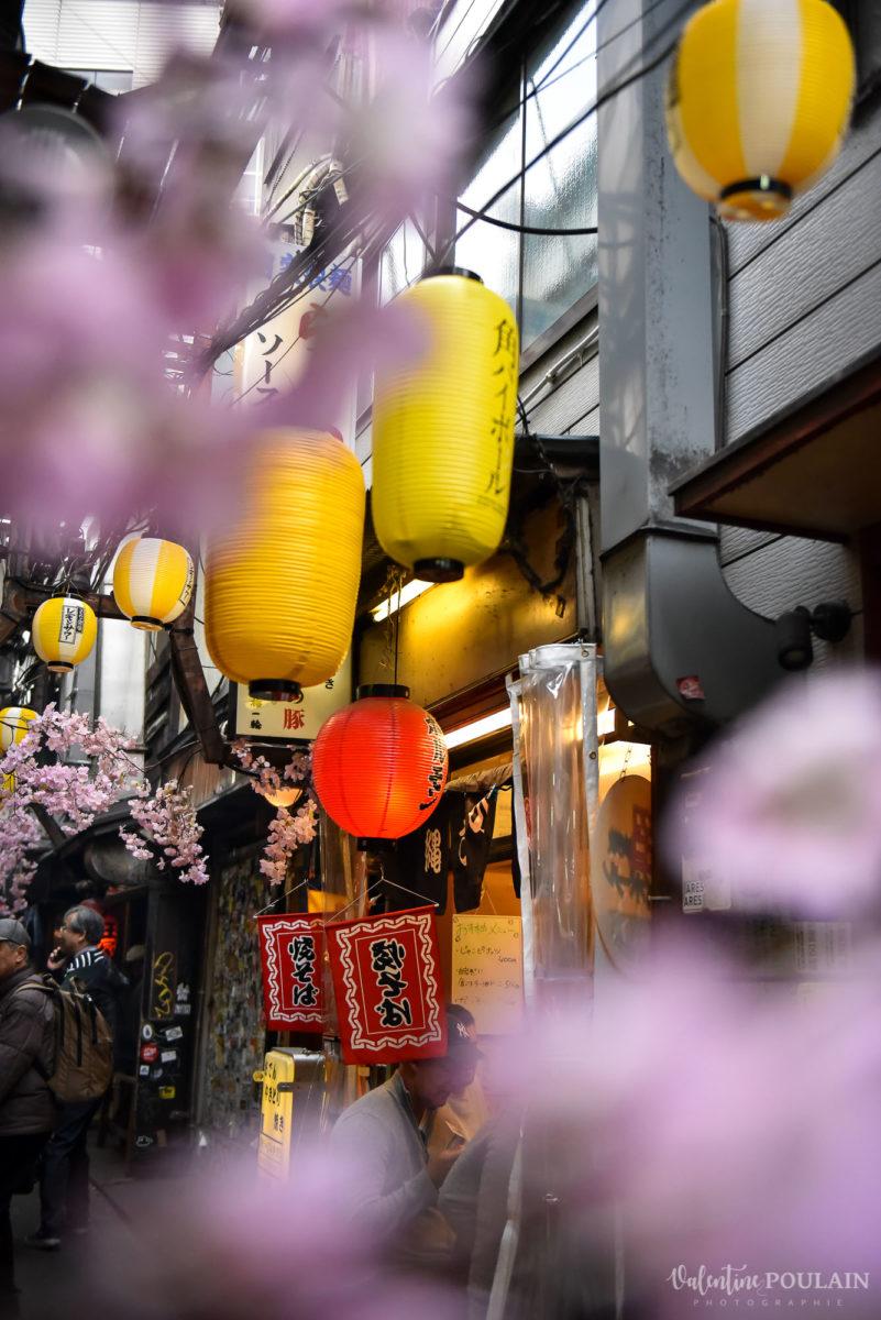 JAPON Tokyo Kyoto - Valentine Poulain ruelle