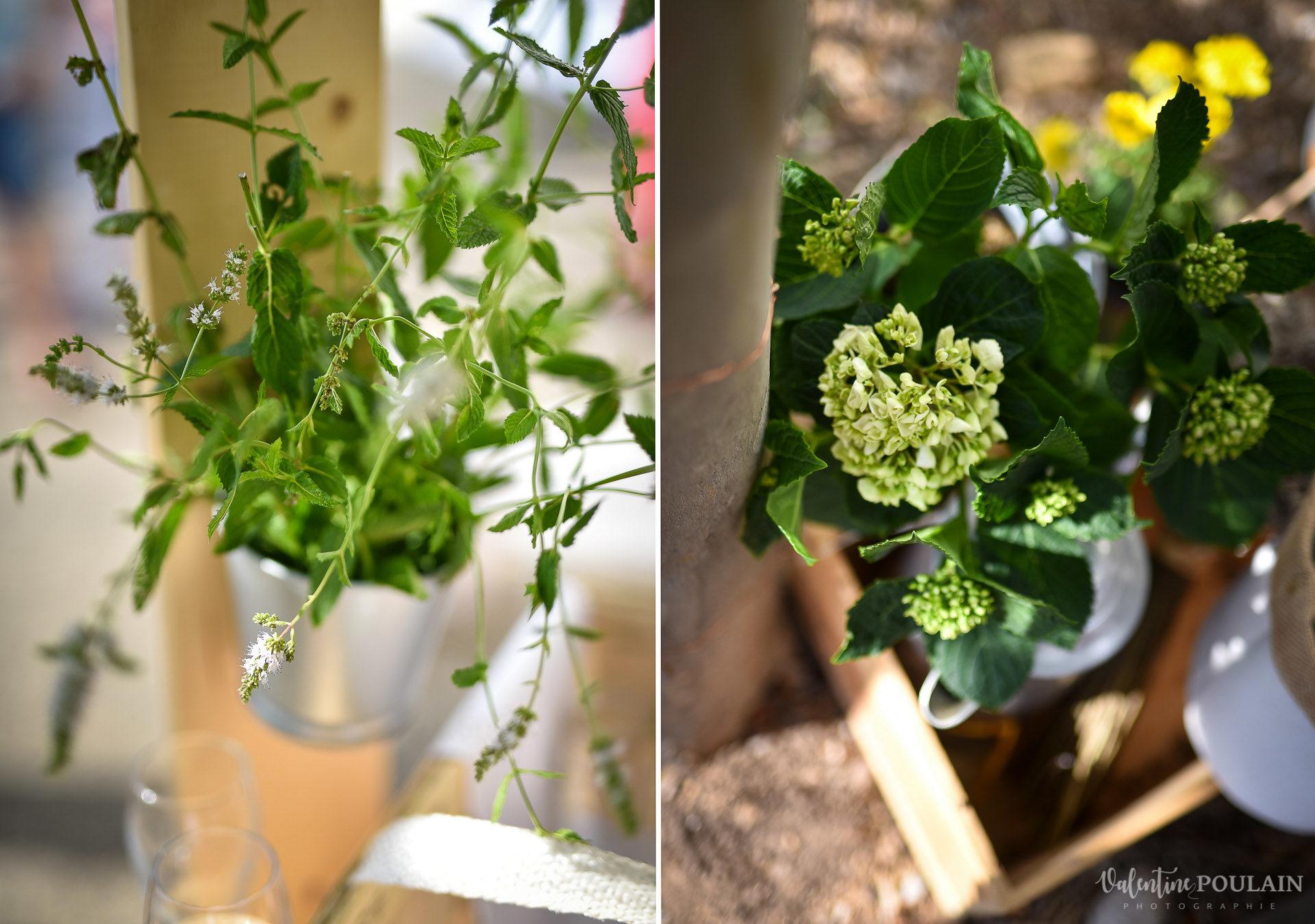 Mariage basketteurs - Valentine Poulain plantes