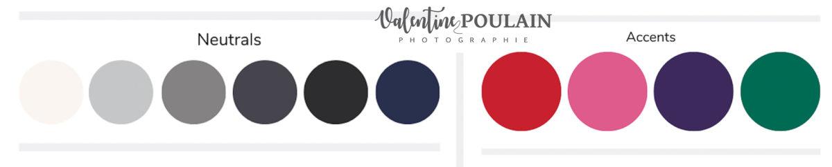 Palette couleurs hiver - Valentine Poulain