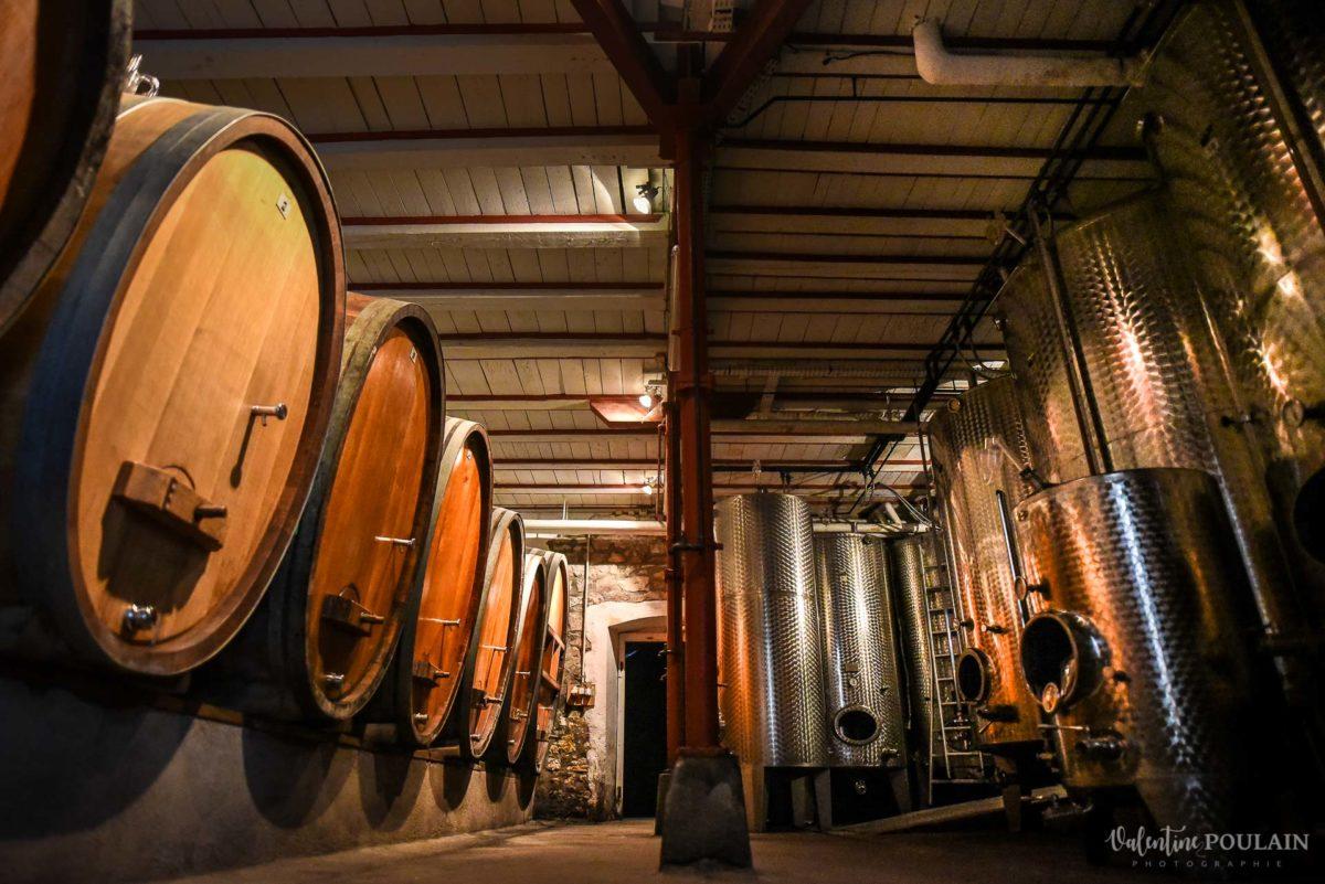 cave visite corporate Domaine vigneron - Valentine Poulain