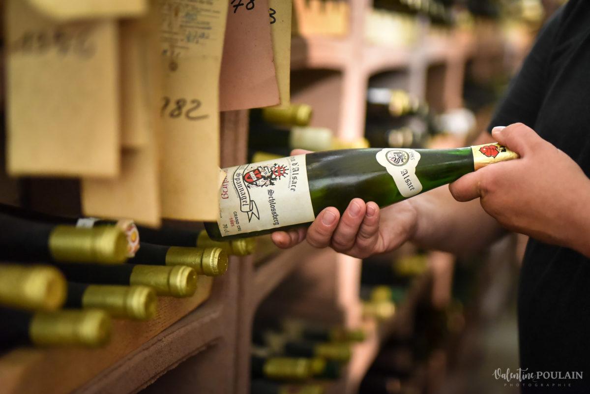 choix corporate Domaine vigneron - Valentine Poulain