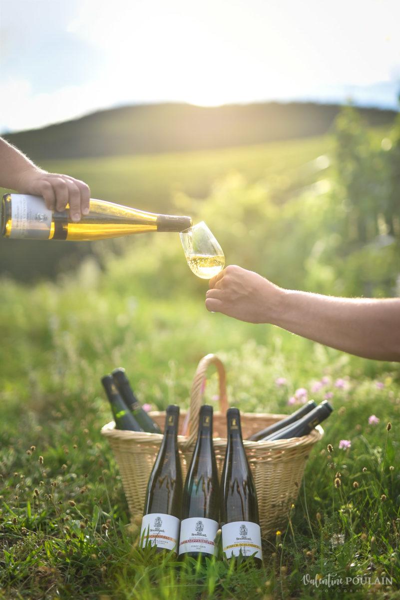 pique-nique panier photo corporate Domaine vigneron - Valentine Poulain