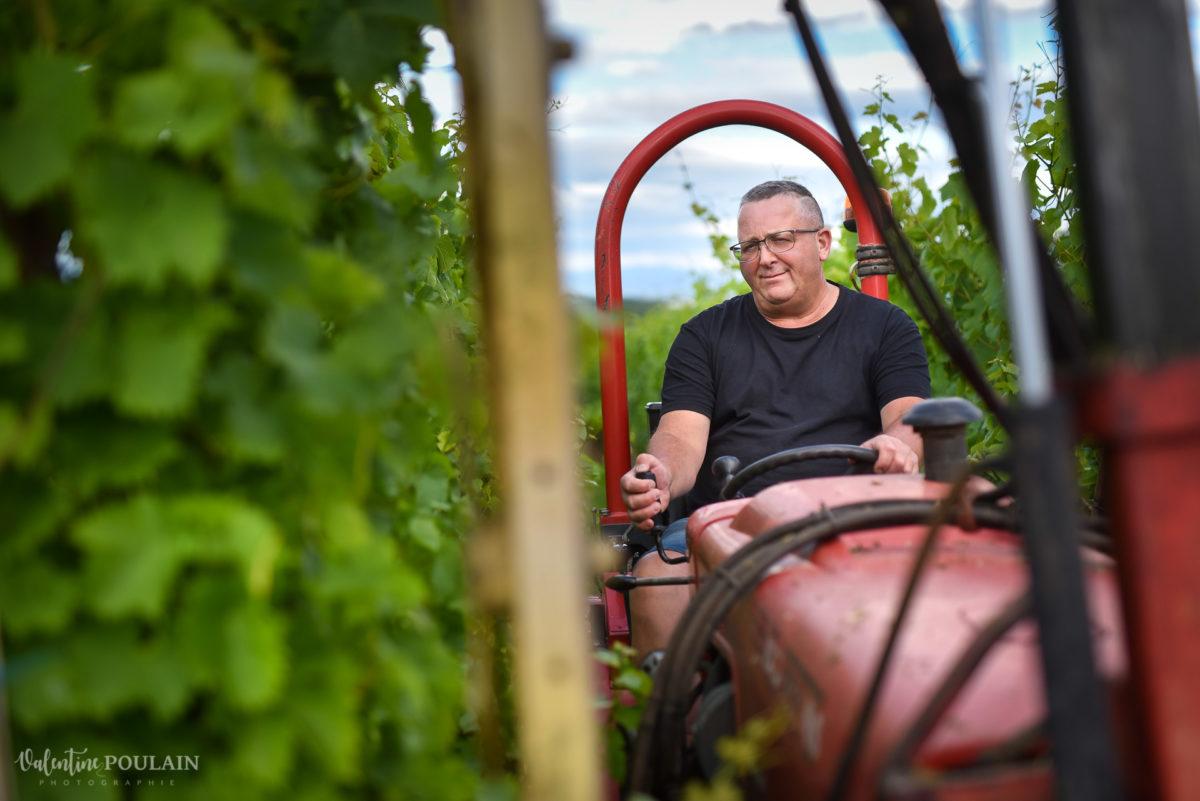 tracteur vigneron - Valentine Poulain