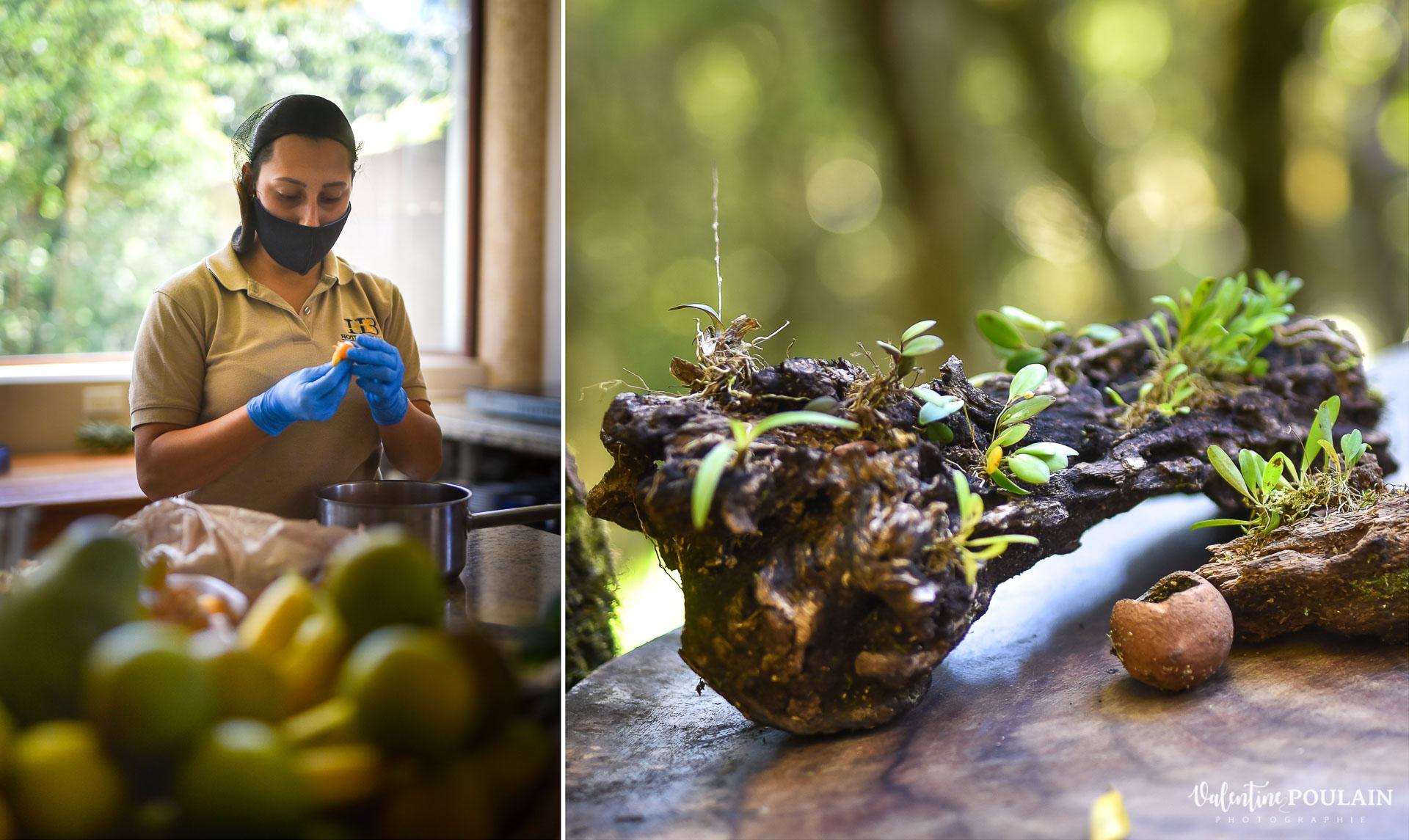 cuisine Photo Hotel Costa Rica Valentine Poulain